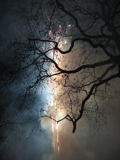fireworks Año Nuevo Chino '08