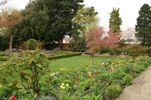 halls-croft-garden