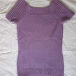 purple, short sleeve top-jumper